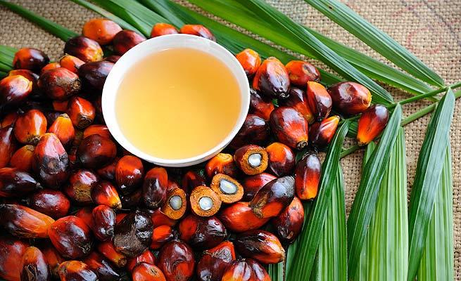Cómo evitar el aceite depalma